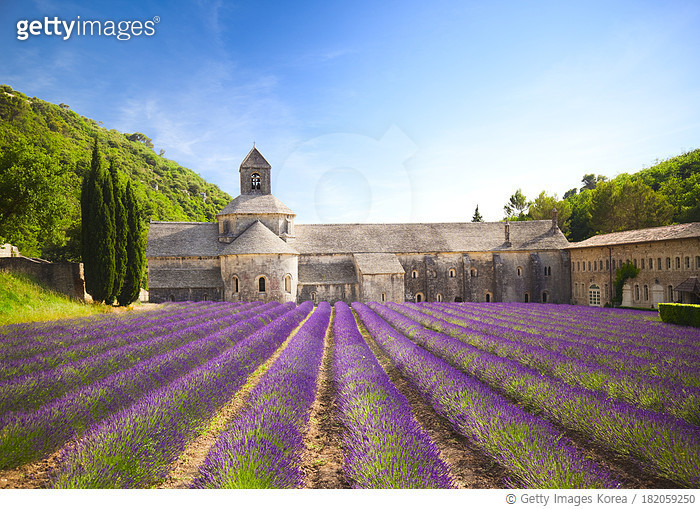 Senanque Abbey (Provence, France)
